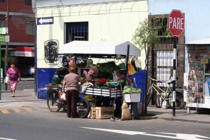 Lima 05-01-09 001